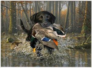 2021 Arkansas Duck Stamp